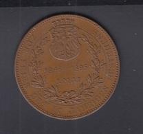 Bronze Medaille Deutscher Phönix Frankfurt Am Main Feuerversicherung 1895 34,2 Gramm 45 Mm - Germany
