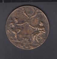 Brazil Bronze Medal Asociasao Commercial Do Rio 190659.85 Gramms 50 Mm - Tokens & Medals