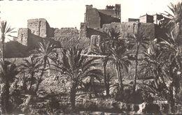 CP - Afrique - Maroc - Kasbah Et Palmeraie - Maroc