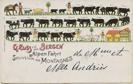 2005 - Suisse  -  GRUSS  Aus Den  BERGEN  - ALPEN FAHRT -   Cachet De Montreux De 1898   RARE - ZH Zurich