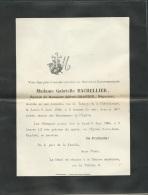F.P. Déces De Mme  Gabrielle Bachellier épouse De M Alfred  Grandin   à Chatellerault Le 6/06/1904 Lo43004 - Avvisi Di Necrologio