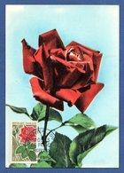 Carte / Roses De France / Orléans  / 8 Septembre 1962 - 1960-69