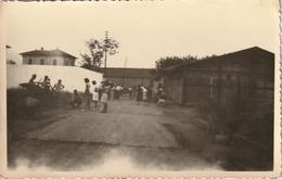 Photo 110 Mm X 65 Mm - 1952- Fréjus 83 - Joueurs De Pétanque -  Scan R/V - Lieux
