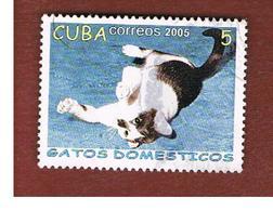 CUBA -  MI  4700 -  2005   CATS: FELIS SILVESTRIS CATUS    - USED - Cuba