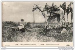 MILITARIA GUERRE 1914-18  Spahi En Reconnaissance  .......... 1914 - Guerre 1914-18