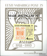 Estonia Block6 (complete.issue.) Unmounted Mint / Never Hinged 1993 Print Edition - Estonia