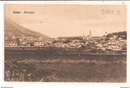 9241  AK PC CPA PANORAMA  OROSEI   TTB C 1918 - Italia