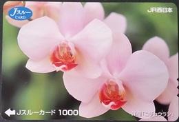 Prepaidcard Japan -  Orchidee (1) - Japan