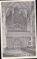 IMMACULATE CONCEPTION CHURCH BRONX, N.Y.C. Rear View And Organ (orgues) - Bronx