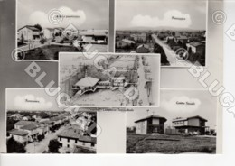 29418 FORLI CESENA 1955 BERTINORO SANTA S. MARIA NUOVA COMITATO ERIGENDE OPERE PARROCCHIALI - Forlì