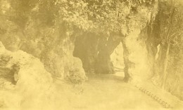 France Lille Grotte Au Jardin Vauban Ancienne Photo Capin 1933 - Places