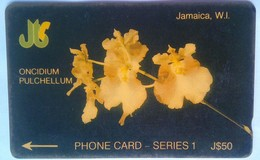 6JAME Orchids J$50 - Jamaïque
