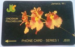 11JAMA Orchids J$50 - Jamaica