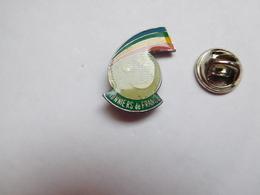 Beau Pin's , Association , Pionniers De France , Scouts , Scoutisme - Associations