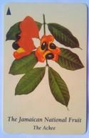 172JAMA National Fruit J$50 - Jamaica