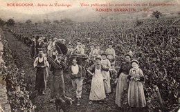 DIJON - Scène De Vendange Vous Préferez Les Excellents Vins Des établissements ADRIEN SARRAZIN - Dijon