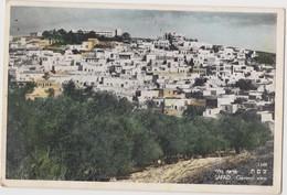 ISRAEL  SAFAD  General View  1959 - Israel