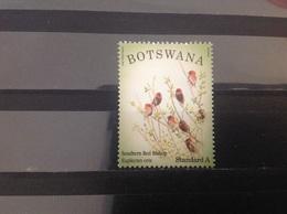 Botswana - Vogels (A) 2014 - Botswana (1966-...)