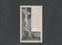 Doodsprentje Ferdinandus Joannes Notelteirs  (° 1852  -  † 1920) - Religión & Esoterismo
