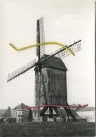 Leisele  : Staakmolen 1804    : Groot Formaat 15 X 10.5 Cm  :  Windmolen - Belgique