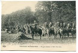 Vlc Grandes Manoeuvres : Dragons Lanciers à L'abri D'un Bois - Manoeuvres