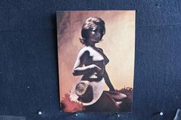 41 - P-up / Carte - Photo /  Pin-Up  - CLAUDINE -  Modèle  Nue,  Daily Girl Press  /  Circulé   . - Pin-Ups