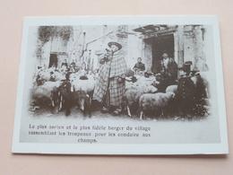 AUTREFOIS ( D17 Coll. G. LALOY / Michel SINIC ) ! - France