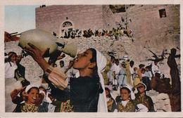 Marriage Ceremony At A Frontier Village - Jordan