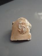 Curieuse Empreinte De Fossile - Fossils