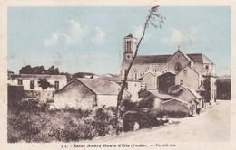 SAINT ANDRE GOULE D'OIE - VENDÉE - (85) - CPA. - Bretignolles Sur Mer