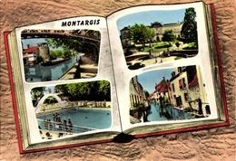 [45] Loiret > Montargis / LIVRE    /LOT  544 - Montargis