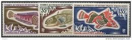 TAAF, N° 043 à N° 045** Y Et T, Poissons, 43 / 44 / 45 - Terre Australi E Antartiche Francesi (TAAF)