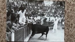 CPSM CORRIDA TAUREAU PHOTO GEORGE ARLES - Corrida