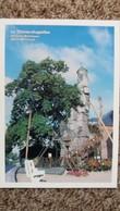 CPM ARBRE LE CHENE CHAPELLES D ALLOUVILLE BELLEFOSSE 76  ARBRES REMARQUABLES ASSOCIATION PROTECTION ARBRES - Trees