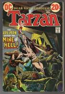 Tarzan Nr 215 - (In English) DC - National Periodical Publications. Inc. - December 1972 - Joe Kubert - BE - DC