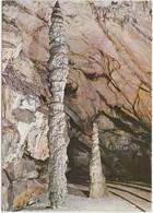 Slovenia, POSTOJNSKA JAMA, Cave, Cipresa, The Cypress, Unused Postcard [21902] - Slovenia