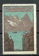 Deutschland Ca 1910 POLARFAHRTEN Norddeutscher Lloyd Bremen Vignette Reklamemarke Poster Stamp * - Vignetten (Erinnophilie)