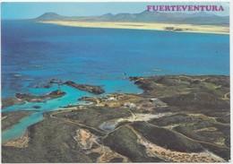 FUERTEVENTURA Island, Islas Canarias, Spain, 1982 Used Postcard [21917] - Fuerteventura