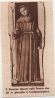 Santino Di Sant'Antonio Da Padova, Dipinto Su Tavola Che Gli Fu Da Giaciglio A Camposampiero (Padova) - Devotion Images
