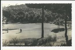 Vidago * Uma Vista Do Golf - Vila Real