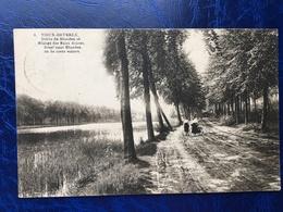 Vieux-Héverlé/drève De Blanden Et étangs Des Eaux-Douces - Oud-Heverlee