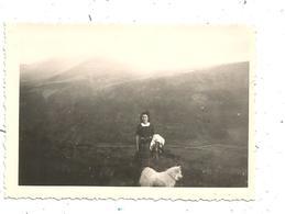 Photographie , 9.5 X 6.5 , Puy De Dome , Sur Le PIC DU CAPUCIN , 1947, Chien - Lieux