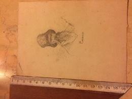 Disegno A Matita Firmato è Datato 1887 Rappresente Un Cosacco - Disegni