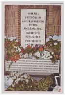 Dt.-Reich (000035) Propaganda Sammelbild Farbig!!, Deutschland Erwacht, Bild 117, Schlageter (Holzheimer Seide) - Briefe U. Dokumente