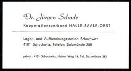 B7330 - Schochwitz - Halle Saale Obst - Dr. Jürgen Schade - Visitenkarte - Visitenkarten