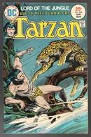 Tarzan Nr 236 - (In English) DC - National Periodical Publications. Inc. - April 1975 - Joe Kubert & Franc Reyes - BE - DC