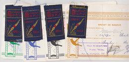 Lot 4 Brevets Natation Helios Charleroi  1962 - Natation