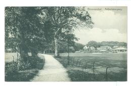 1900's, Netherlands, Bloemendaal. Aelbertsbergweg. Printed Pc, Unused. - Bloemendaal