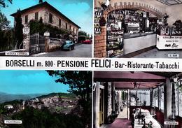 FIRENZE - Pelago - Borselli - Pensione Bar Ristorante Felici - 4 Vedute - Macchina Per Caffè - Birra Bavaria St. Pauli - Firenze (Florence)
