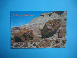 NORTHERN  -  Petrified Logs  -  ARIZONA  -  Etats Unis - Etats-Unis